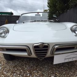 Alfa Romeo Roundtail' Spider Junior
